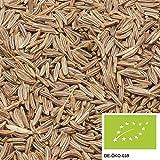 250g Bio Kümmel ganz - Exklusive Bio Gewürze für einen leckeren Kümmel Tee oder als Brotgewürz