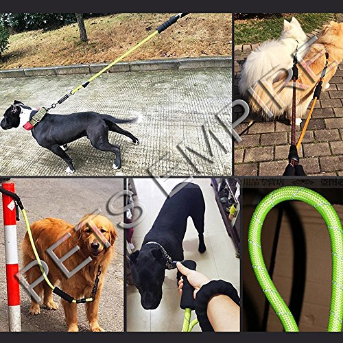 Pets Empire Pet Dog Walking And Training Rope Lead Leash With Shock Spring For Large Dogs 1 Piece Color May Vary