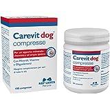 CAREVIT DOG MANG 100CPR