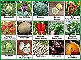 Gemüse Set 2: Broccoli Pastinaken Blumenkohl Gurken Kürbis Zucchini Weißkohl Aubergine ... Samen...