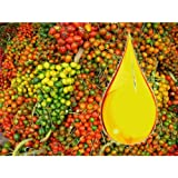 Palmkernöl, desodoriert, bio, 1000gr
