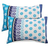 Ahmedabad Cotton 2 Pcs Cotton Pillow Cover Set - Blue
