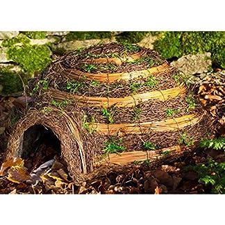 wildlife world hedgehog igloo home (one size) (brown) Wildlife World Hedgehog Igloo Home (One Size) (Brown) 61EhrVjMw7L