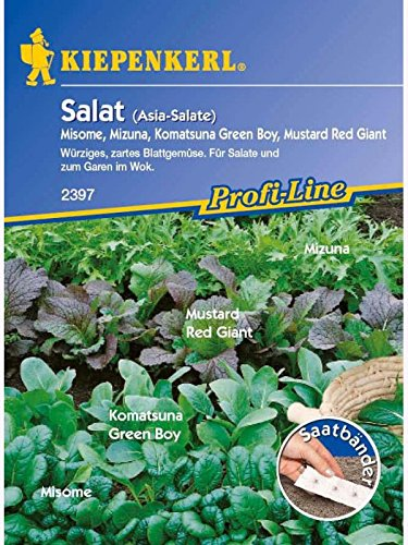 Asia-Salate-Mischung Saatband