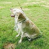 Winthome, impermeabile pieghevole trasparente per cane, con cappuccio, copertura ideale antipioggia, per cani i piccola e media taglia, abbigliamento per l'esterno
