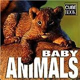 Baby Animals (MiniCube)