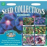 Mr. Fothergill's 11066 - 6 confezioni di mix di semi per piante rampicanti