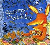 Stormy Weather by Debi Gliori (2009-11-01)