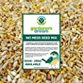 GardenersDream No Mess Seed Mix | Garden Wild Bird Food Mixture | Husk and Shell Free Seeds | Premium Quality Balanced Formula | Protein-Rich Great Source of Energy | Attracts Various Birds from GardenersDream