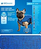 AQUA COOLKEEPER® Cooling Coat for Dogs