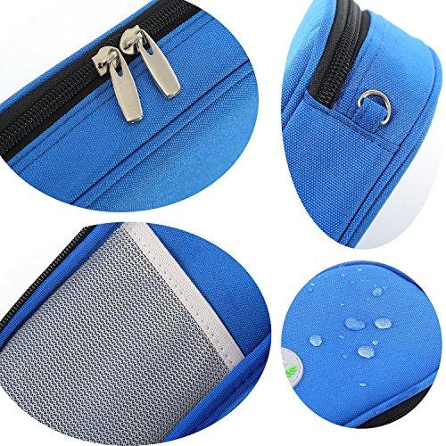 61EmdxHqjNL - Bolso portátil del refrigerador del organizador de la insulina, bolso del refrigerador del viaje de la caja del protector médico con paquete de hielo para el diabético (Púrpura + 2 Bolsas de hielo)