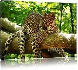 Leopard auf Ast Format: 100x70 cm auf Leinwand, XXL riesige Bilder fertig gerahmt mit Keilrahmen, Kunstdruck auf Wandbild mit Rahmen, günstiger als Gemälde oder Ölbild, kein Poster oder Plakat