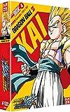 Dragon Ball Z Kai Box 4/4 - The Final Chapters - DVD [Edizione: Francia]