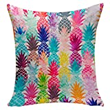 TOOGOO(R) Square flax Cushion Covers Pineapple Printed Decorative Living Bed Pillows Cover Sofa Decoration Gift (style 14)