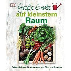 Große Ernte auf kleinstem Raum: Originelle Ideen für den Anbau von Obst und Gemüse