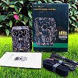 TEC.BEAN 12 MP HD 1080P Caméra de chasse Imperméable, Surveillance Infrarouge Sans Luminosité avec 36 LED IR, Vision Nocturne jusqu'à 23 m (DTC-880V)