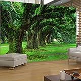 XLi-You 3D Semplice Parete Tv Wallpaper Salotto Divano Verde Bosco La Pittura Di Paesaggio 200Cmx150Cm