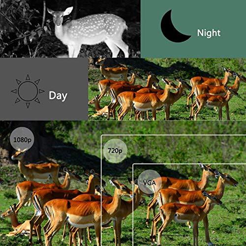 Gusaman Wildkamera Überwachungskamera 1080P 16MP Jagdkamera Fotofalle PIR 20M Nachtsicht@#161