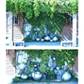 Edelstahlkugel Rosenkugel matt/glänzend 3-58 cm Edelstahl Kugel Schwimmkugel von Köhko - Du und dein Garten