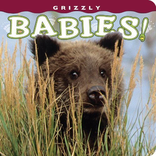 Grizzly Babies! (Babies! (Farcountry Press)) by photography by Henry H. Holdsworth (2013-01-01)