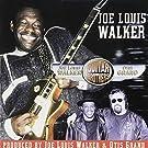 Guitar Brothers by Joe Louis Walker