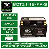 BC Lithium Batteries BCTZ14S-FP-S Motorrad...