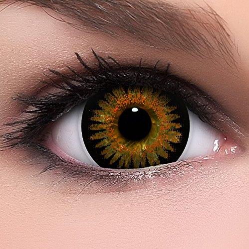 Circle Lenses braune 'Bambi Brown' ohne Stärke + Kombilösung + Behälter Big Eyes 15mm farbige Kontaktlinsen (All Black Kontaktlinsen)