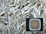 Ray Grass Italienisch–40Gramm–Taumel-Multiflorum–Italian Ryegrass–(Dünger grün–Green Manure) - Best Reviews Guide