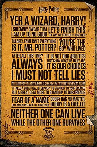 Harry Potter Poster Quotes (61cm x 91,5cm) + Geschenkverpackung. Verschenkfertig!