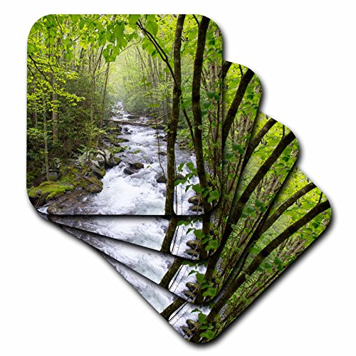 3drose-cst-209068-1-usa-tennessee-smoky-mountain-np-middle-prong-trail-of-little-river-soft-coaster-