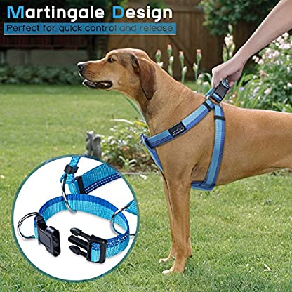 PETBABA No Pull Dog Harness, Front Clip Give Pet Choke Free Walking, Reflective Safety at Night, Step-in Vest with… 6