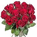 18 rote Rosen von Valentins - Du und dein Garten