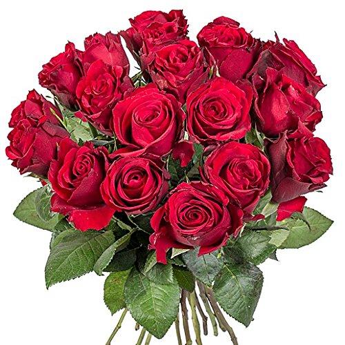 18-rote-rosen