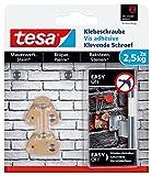 tesa Klebeschraube für Mauerwerk und Stein, Halteleistung 2,5 kg, dreieckig, 2 Stück