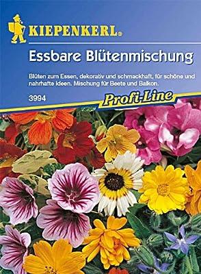 Essbare Blütenmischung Blüten für Gourmets einjährige Mischung von Kiepenkerl bei Du und dein Garten