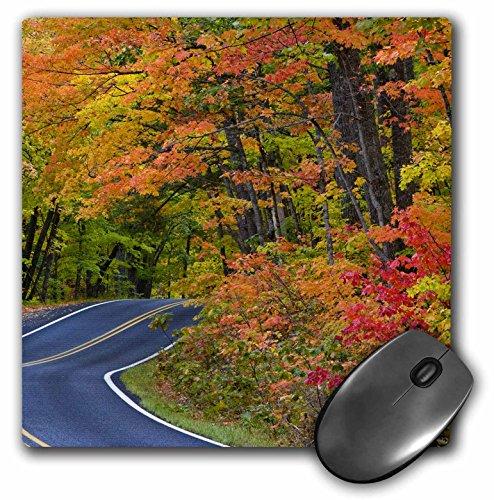 3drose LLC 20,3x 20,3x 0,6cm Herbst Highway 41kupfer Harbor Michigan Chuck Haney Mauspad (MP 91157_ 1) (Michigan Kupfer)