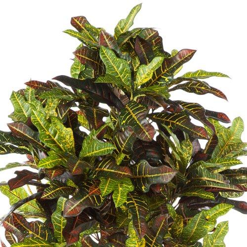 artplants – Künstlicher Kroton Baum Casey, 390 Blätter, grün-Gelb-Rot, 180 cm – naturgetreuer Kunstbaum/Deko Pflanzen Strauch