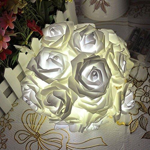 SODIAL(R) 20 LED-Rosen-Form-Lampen LED-Streifen-Fiesta Weihnachtsdekoration der Innen - 5