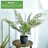 Beata.T Künstliche Blumen Farne Grüne Pflanzen Bonsai Home Office Grüne Dekorationen Wohnzimmer Gefälschte Grüne Pflanzen Große Topfpflanzen, 2