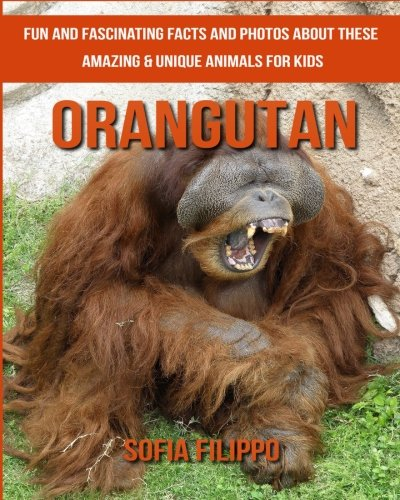 Orangutan: Fun and Fascinating Facts and Photos about These Amazing & Unique Animals for Kids