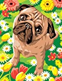 Mammut 8221521 - Painting by Numbers Junior-Mops, ca. 30,3 x 22,4 cm
