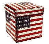 Aufbewahrungsbox Sitztruhe Sitzhocker Hocker Stauraum Sitzbox Truhe Polsterhocker Sitzwürfel Sitzkasten Spielkiste Spielzeugtruhe 30x30x30 cm Gepolsterte Sitzfläche USA Flagge