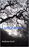 Image de Luminance (The Knights of Darkfall Book 1) (English Edition)