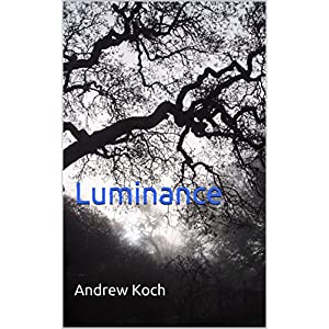 Luminance (The Knights of Darkfall Book 1) (English Edition)