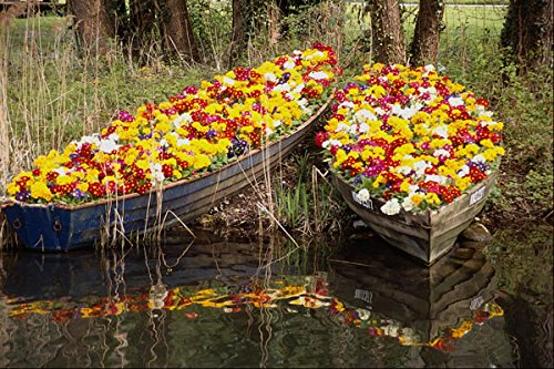 698095 Boats Full Of Flowers A4 Photo Poster Print 10x8