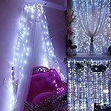 Henweit 8M 100 LED Lichtervorhang Lichterkette Vorhang Speichercontroller Licht Schnur