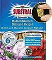 SUBSTRAL® Osmocote® Langzeit Dünge-Kegel,25 Stück von Substral bei Du und dein Garten