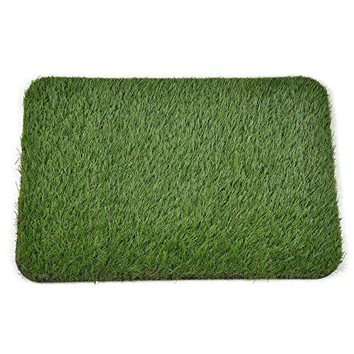 Golden Moon Zerbino Serie PE sintetico tappeto erboso artificiale erba gomma Backed Per Doorway 40 x 60 cm