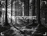 Mystic Forest 2018: NEU (Gallery) -