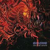 Dark Recollections [Vinyl LP]